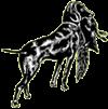 jghv_png-logo